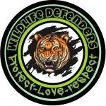 Wildlife's avatar